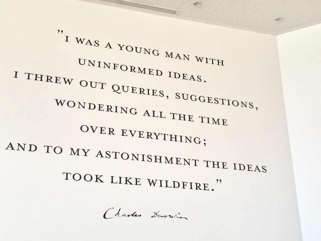 Darwin Cafe quote
